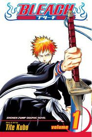 Bleach Vol 1