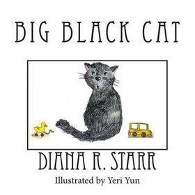 Big Black Cat