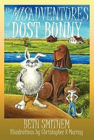 The Misadventures of Dust Bunny