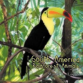 South American Rainforest Animals