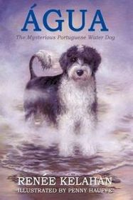 Agua, the Mysterious Portuguese Water Dog