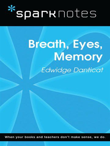 breath eyes memory Struggling with edwidge danticat's breath, eyes, memory check out our thorough summary and analysis of this literary masterpiece.