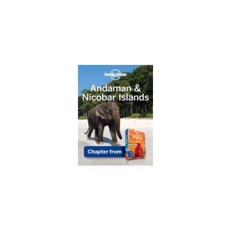 Lonely Planet India Ebook