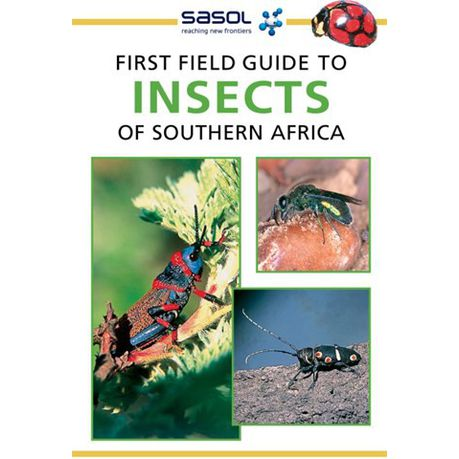 Read book the audubon society field guide to north american insects a….