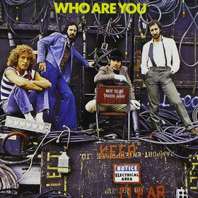 Who Are You - (Import Vinyl Record)