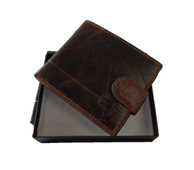 Fino Male Leather Wallet - Brown (Hl1301)