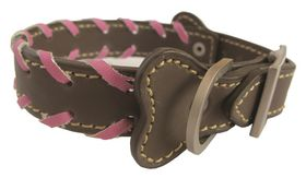 Pucci - Leather Collar - Brown - Medium (36cm x 1.8cm)