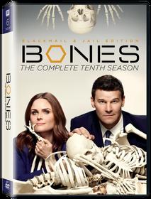 Bones Season 10 (DVD)