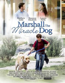 Marshall The Miracle Dog (DVD)