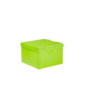 Meeco Creative Collection P.P Medium Size Storage Box - Green