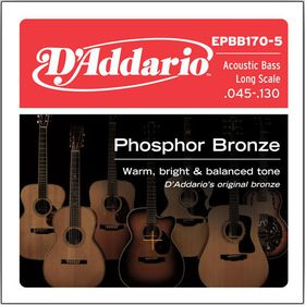 D'Addario EPBB170-5 Phosphor Bronze 5-String Long Scale Acoustic Bass Strings - 45-130