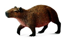 Collectawoodlands-Capybara-M