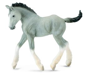 Collecta Horses-Shire Horse Foal - Grey-M