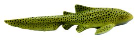 Collecta Sea Life-Zebra Shark-M
