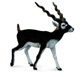 Collecta Wildlife-Blackbuck-L