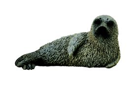 Collecta sea Life-Spotted Seal Pup-S