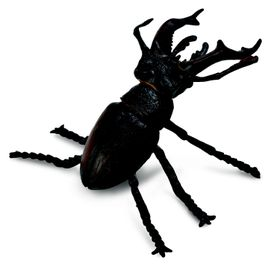 Collecta Insects-Stag Beetle-M