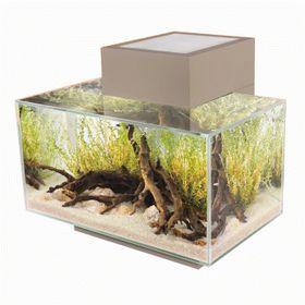 Fluval - Edge 21 Aquarium 23 Litre - LED Gloss Pewter