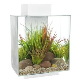 Fluval - Edge 42 Aquarium 46 Litre - LED Gloss White