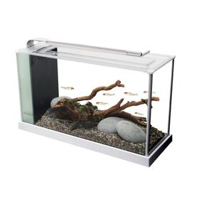 Fluval - Spec 4 - Glass Aquarium - White - 19 Litre