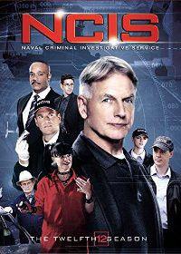 Ncis:Twelfth Season - (Region 1 Import DVD)