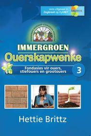 Immergroen Ouerskapwenke - Fondasies Vir Ouers, Stiefouers En Grootouers 3 (DVD)