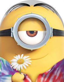 Minions - Limited Edition Collectors Case (DVD)