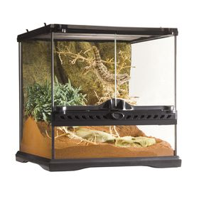 Exo Terra Natural Terrarium Mini Wide Buy Online In South
