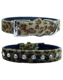Doggie Hillfigher - Faux Leopard Skin Collar - Small