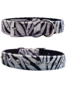Doggie Hillfigher - Faux Zebra Skin Collar - Small