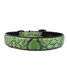 Doggie Hillfigher - Faux Snake Skin Collar - Extra-Small