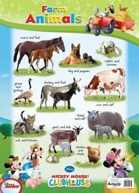 Butterfly Wallchart - Mickey Mouse Farm Animals