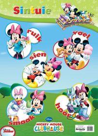 Butterfly Wallchart - Mickey Mouse Sintuie