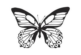 Kaisercraft Background Clear Stamp - Majestic Butterfly