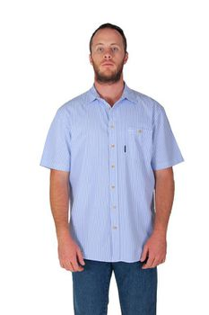 Wildway Men's Casual Shirts - Blue Stripe