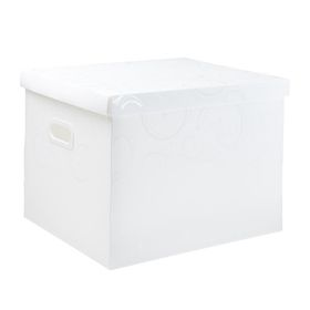Meeco Creative Collection P.P Archive Size Storage Box - White