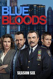 Blue Bloods: Season 6 (DVD)