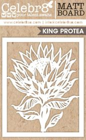 Celebr8 Picture Perfect Matt Board Midi - Protea