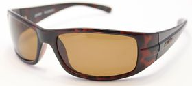 Glider Cutter Sunglasses - Shiny Brown