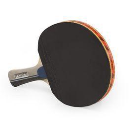 SNT Sports Table Tennis Bat Platinum