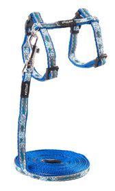 Rogz - 8mm NightCat Cat Lead/H-Harness - Blue Floral