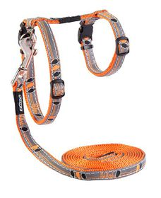 Rogz - 8mm NightCat Cat Lead/H-Harness - Orange Birds