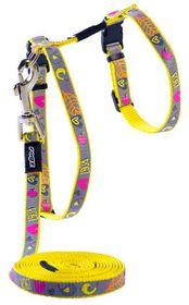 Rogz - Reflecto Cat H-Harness & Lead Combination - Dayglo Bird Design