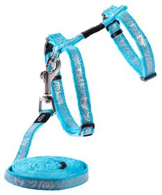Rogz - Sparkle Cat H-Harness & Lead Combination - Turquoise