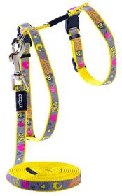 Rogz - oCat 11mm Cat Lead/H-Harness - Dayglo