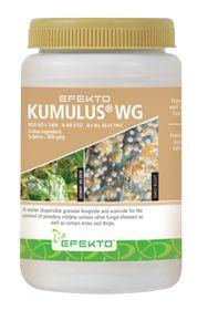 Efekto - Cumulus Wg Fungicide - 250g