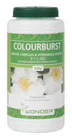 Efekto - Colour-burst Azalea - 500g