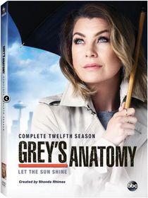 Grey's Anatomy Complete Season 12 (DVD)