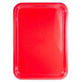 Lumoss - Plastic Rectangle Tray - 42cm x 30cm - Red