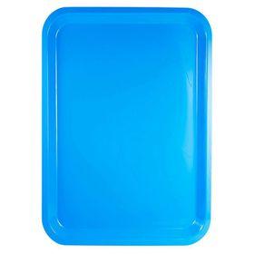 Lumoss - Plastic Rectangle Tray - 42cm x 30cm - Cyan Blue